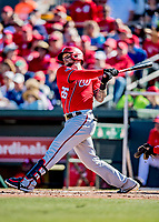 29 February 2020: Washington Nationals infielder Brandon Snyder in action during a Spring Training game against the St. Louis Cardinals at Roger Dean Stadium in Jupiter, Florida. The Cardinals defeated the Nationals 6-3 in Grapefruit League play. Mandatory Credit: Ed Wolfstein Photo *** RAW (NEF) Image File Available ***
