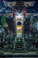 Bali, Indonesia.Hindu Priest Praying for a Good Rice Harvest.  Pura dalem Temple, Dlod Blungbang Village, south-central Bali north of Ubud.
