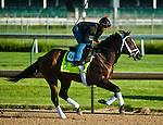 April 28, 2015: Materiality, trained by Todd Pletcher, exercises in preparation for the 141st Kentucky Derby at Churchill Downs in Louisville, Kentucky. John Voorhees/ESW/CSM