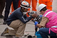 Rescue volunteers with a dog trainned to  find survivors in the corner of Bolivar street with  Chimalpopocain dowtown Mexico, two days after a 7.1 eartquake shake the capital of the country l.<br /> 21/09/2017.