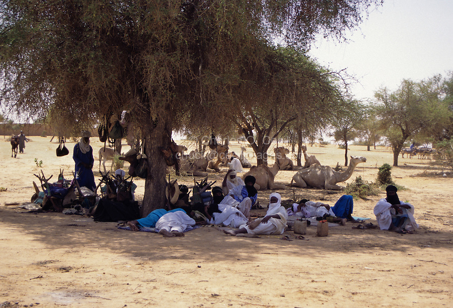 Akadaney, Central Niger, West Africa.  Fulani Nomads Relaxing at Mid-Day.  Annual Gathering, Geerewol.
