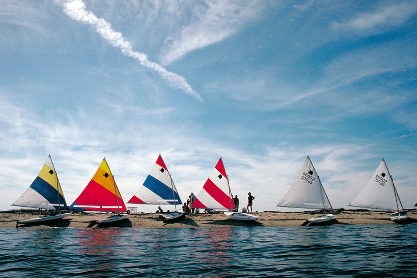 Six Sunfish with their sails extended lined up on the beach. Sailing, sailboat, ocean. Massachusetts, Nantucket.