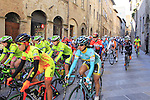 The start of the 2015 Strade Bianche Women Elite cycle race 103km over the white gravel roads from San Gimignano to Siena, Tuscany, Italy. 8th March 2015<br /> Photo: Eoin Clarke www.newsfile.ie