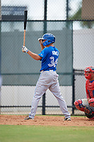 Toronto Blue Jays Tanner Kirwer (36) at bat during an Instructional League game against the Philadelphia Phillies on September 30, 2017 at the Carpenter Complex in Clearwater, Florida.  (Mike Janes/Four Seam Images)