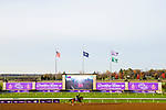 November 5, 2020: Manny Wah, trained by trainer Wayne M. Catalano, exercises in preparation for the Breeders' Cup Sprint at Keeneland Racetrack in Lexington, Kentucky on November 5, 2020. Jon Durr/Eclipse Sportswire/Breeders Cup