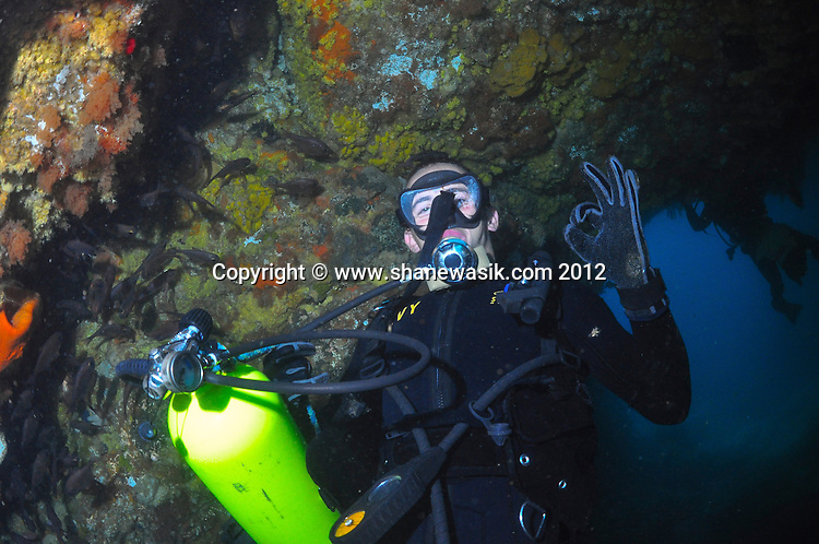A diver in the cave at Astrolabe Reef. Taken at a depth of around 25m depth on a gloomy day. Image taken prior to MV Rena wrecking in 2011.
