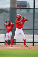 GCL Phillies West Jadiel Sanchez (53) bats during a Gulf Coast League game against the GCL Tigers West on July 27, 2019 at the Carpenter Complex in Clearwater, Florida.  (Mike Janes/Four Seam Images)