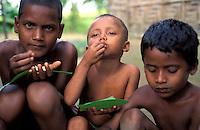 Bangladesh, Country side, 15 Januari 1991..Jongens eten rijst van een bananen blad...Young boys eting rice from a banana leaf...Photo by Kees Metselaar