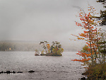 Stormy Island, Moose Lake, Maine