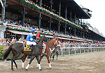 16 August 2008: Better Talk Now joins the post parade for the Grade 1 Sword Dancer Invitational at Saratoga Race Course in Saratoga Springs, New York.  Better Talk Now closed quickly, but could not catch winner Grand Couturier.