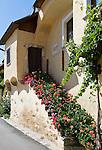 Austria, Lower Austria, Spitz at river Danube: wine growing region at UNESCO World Heritage Wachau, residential building