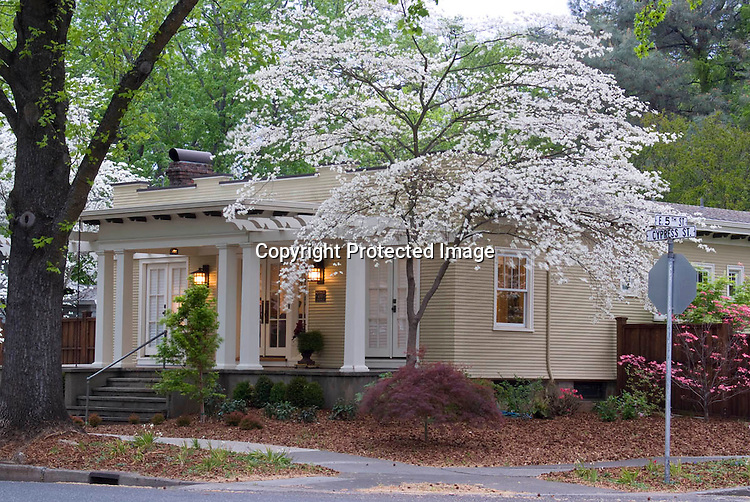 Chico California Bungalow 435 Cypress Street Owned by Marci Goulart photographed April 10, 2010