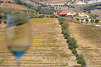 vineyards a glass a quinta douro portugal
