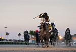January 23, 2021: Knicks Go, ridden by Joel Rosario, wins the Pegasus World Cup Invitational during Pegasus World Cup Invitational Day at Gulfstream Park in Hallandale Beach, Florida. Scott Serio/Eclipse Sportswire/CSM
