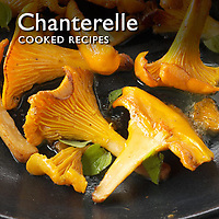 Food Pictures of Cooked Chanterelle or Girolle mushroom recipe dishes. Food Photos & Images