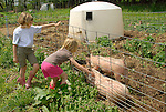 Steam Valley Fiber Farm. Two girls looking at pigs