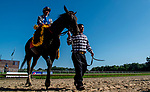 July 13, 2019 : Elate #7, ridden by Jose Ortiz, wins the Delaware Handicap for the second year in a row on Delaware Handicap Day at Delaware Park in Stanton, Delaware. Scott Serio/Eclipse Sportswire/CSM