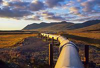 The Trans Alaska oil pipeline stretches across the autumn tundra of Alaska's Arctic coastal plains, Arctic, Alaska