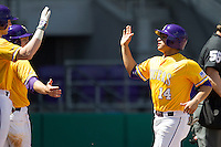 LSU Tigers third baseman Christian Ibarra #14 is greeted by teammates after scoring against the Auburn Tigers in the NCAA baseball game on March 24, 2013 at Alex Box Stadium in Baton Rouge, Louisiana. LSU defeated Auburn 5-1. (Andrew Woolley/Four Seam Images).