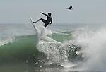 FB 385 Surfer and Cormorant. 5x7 postcard