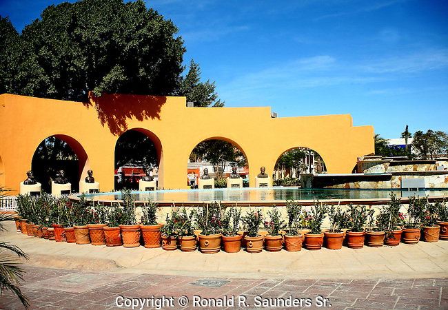 PLANTS AND POOL IN PARK IN SAN JOSE DE CABO MEXICO