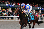 31 October 2009: Blame (no 9), ridden by Jamie Theriot, and trained by Albert M. Stall Jr. leads the field of 10 to the wire during the 51st running of the $150,000 Fayette Grade II stakes race.