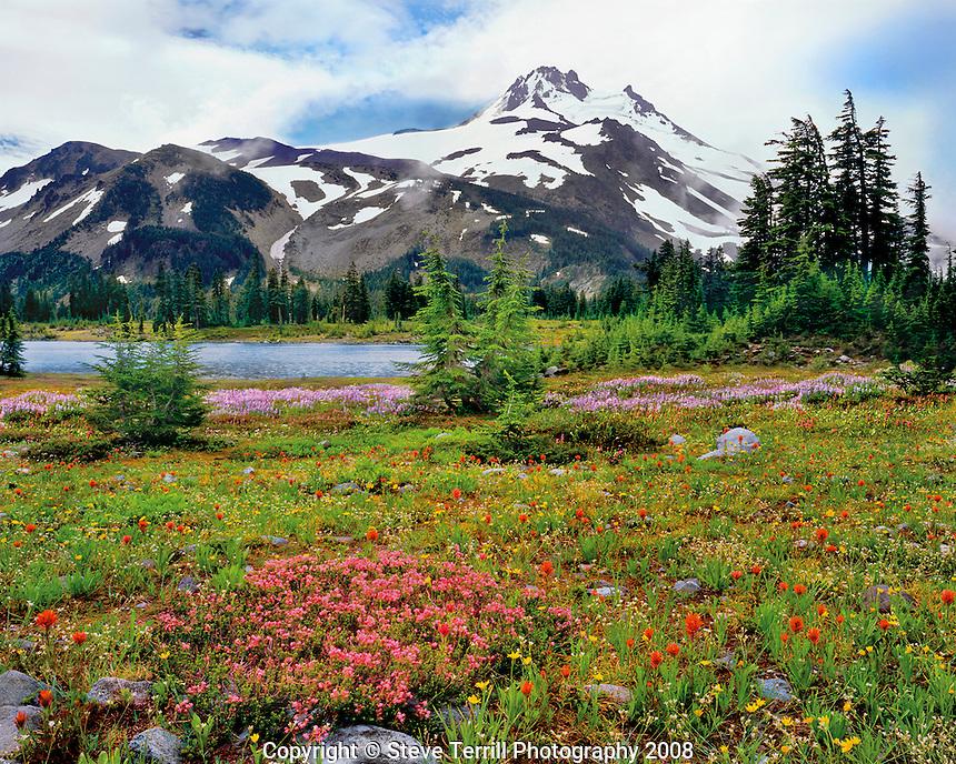 Mr Jefferson from Lakes Basin in Mt Jefferson Wilderness Oregon