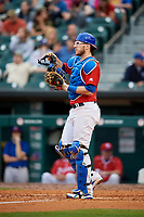 Buffalo Bisons catcher Danny Jansen (9) during a game against the Lehigh Valley IronPigs on June 23, 2018 at Coca-Cola Field in Buffalo, New York.  Lehigh Valley defeated Buffalo 4-1.  (Mike Janes/Four Seam Images)