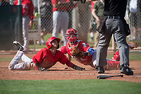 Cincinnati Reds catcher Ernesto Liberatore (86) during a Minor League Spring Training game against the Los Angeles Angels at the Cincinnati Reds Training Complex on March 15, 2018 in Goodyear, Arizona. (Zachary Lucy/Four Seam Images)