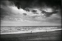 Europe/France/Nord-Pas-de-Calais/Pas-de-calais/62/Wimereux: Chien et cerf volant sur la plage