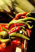 Sarajevo, Bosnia. Green and red chilli peppers for sale on a market stall.