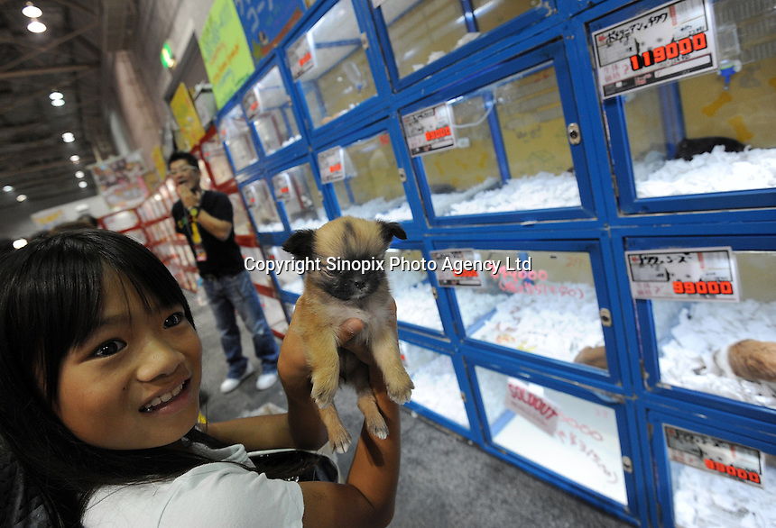 Tiny pets are sold in pet shops in Tokyo, Japan. Japan has 23 cats and dogs as pets and is overpoulated. The pets come from unregulated breeders and often end up getting dumped and gassed...photo by  / Sinopix.