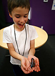 Robby Newton, 8, holds a Madagascar hissing cockroaches during a presentation by Gabe Kerschner, with Conservation Ambassadors, at the Boys & Girls Club of Western Nevada in Carson City, Nev., on Tuesday, June 12, 2018 as part of the Carson City Library's Summer Learning Challenge. <br /> Photo by Cathleen Allison/Nevada Momentum