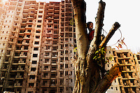 Aniket sitting in a tree..10 year old Aniket lives with his parents and sister in a slum in New Delhi. He wants to become an architect. Behind the house where he lives a large multi-story building is being built. Aniket would like to live there one day. ..