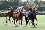Silver Cloud with jockey Fernando Jara on board wins the Bob Umphrey Turf Sprint Stakes at Calder Racecourse, Miami Gardens, FL 07-06-13, Summit Of Speed Day