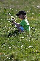 Europe/France/Midi-Pyrénées/12/Aveyron/Aubrac/Env de Laguiole: Enfant cueillant des fleurs lors d'une  randonnée sous le Puech du Suquet [Autorisation : 2011-120] [Autorisation : 2011-121]