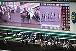 Race number 5 at Sha Tin racecourse on November 1, 2017 in Hong Kong, China. Photo by Marcio Machado / Power Sport Images