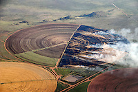 Brennende Felder: AFRIKA, SUEDAFRIKA, 19.12.2007: abbrennen, abbrennend, Acker, Ackerbau, Ackerland, acre, acres, Aecker, aerial photo, aerial photos, aerial view, aerial views, agriculture, air photo, air photos, Ansicht von oben, anzuenden, anzuendend, arable land, biotope, biotopes, bird's eye view, bird's-eye view, brennen, brennend, burning, cultural landscape, cultural landscapes, cultural sceneries, cultural scenery,  Element, Elemente, enlightening, entzuenden, entzuendend, environment, farming, Feld, Felder, Feldlandschaft, Feldlandschaften, Feuer, Feuer machen, field, field landscape, field landscapes, field sceneries, field scenery, fields, fire, Getreidefeld, Getreidefelder, grain cultivation, grain field, grain fields, Hochformat, ignite, igniting, inflame, inflaming, Jahreszeit, Jahreszeiten, Kulturlandschaft, Kulturlandschaften, landscape, landscapes, Landschaft, Landschaften, Landwirschaft, Lebensraeume, Lebensraum, Luftaufnahme, Luftaufnahmen, Luftbild, Luftbilder, Rauch, rauchend, season, seasons, set fire, setting fire, smoke, Sommer, Stoppelfeld, Stoppelfelder, stubble field, stubble fields, summer, Umwelt, verbrennen, verbrennend, vertical format, view from above, Vogelperspektive, Vogelschau (Perspektive), von oben, Aufwind-Luftbilder