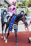 Jockey Karis Teetan riding #3 Hot King Prawn (C) celebrates after winning the National Day Cup (Handicap) during Hong Kong Racing at Sha Tin Racecourse on October 01, 2018 in Hong Kong, Hong Kong. Photo by Yu Chun Christopher Wong / Power Sport Images