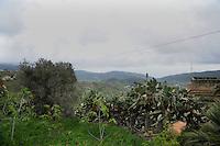 Castellabate, Salerno...