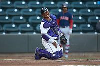 Winston-Salem Dash catcher Yermin Mercedes (6) winces in pain after taking a foul ball to the groin area during the game against the Salem Red Sox at BB&T Ballpark on April 21, 2018 in Winston-Salem, North Carolina.  The Dash walked-off the Red Sox 4-3.  (Brian Westerholt/Four Seam Images)