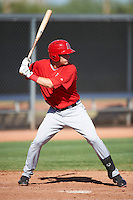 Los Angeles Angels minor league infielder Michael Snyder #9 during an instrasquad game at the Tempe Diablo Stadium Complex on October 10, 2012 in Tempe, Arizona.  (Mike Janes/Four Seam Images)