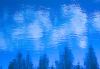"""""""BOW RIVER IMPRESSIONISM IN BLUE""""<br /> <br /> (1) 40 x 30 canvas print $3,500<br /> (1) 36 X 27 canvas print $2,800<br /> <br /> 17 x 12.5 signed paper print<br /> 1/50 $126.00<br /> <br /> <br /> <br /> <br /> <br /> <br /> A blue filter was used in creating this image. Photograph of the surface of the Bow River in Banff National Park Alberta Canada. White clouds and tree tops are reflected in the water."""