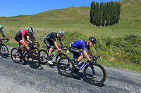 Luke Mudgway (Black Spoke) leads during the first Alredton circuit. Masterton-Alfredton road circuit - Stage Two of 2021 NZ Cycle Classic UCI Oceania Tour in Wairarapa, New Zealand on Wednesday, 13 January 2021. Photo: Dave Lintott / lintottphoto.co.nz