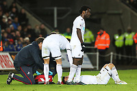 Roque Mesa of Swansea City receives treatment after cutting his head during the Premier League match between Swansea City and Bournemouth at the Liberty Stadium, Swansea, Wales, UK. Saturday 25 November 2017