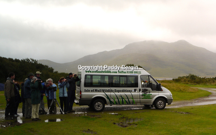 A wildlife expedition group on the Isle of Mull observing a Sea Eagle. When its raining these vans pull into this bay where I was camping every hour.<br />