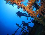 Orchid Island, Taiwan -- Divers checking out the Ba Dai ship wreck.