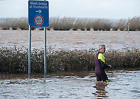 Flooding in the Somerset Levels, village of Burrowbridge. 8-2-14 Local man in a wet suit wades into the flood.