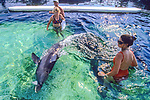Working With Stranded Dolphin