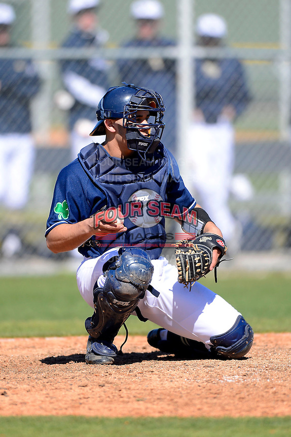 Notre Dame Fighting Irish catcher Ricky Sanchez #22 during a game against the Mercer Bears at the Buck O'Neil Complex on February 17, 2013 in Sarasota, Florida.  Mercer defeated Notre Dame 5-4.  (Mike Janes/Four Seam Images)